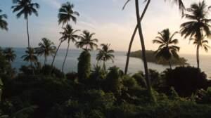 Que savez-vous de la Guyane française ?