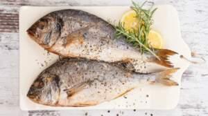 Testez vos connaissances sur le poisson !