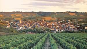 Quiz spécial Bourgogne
