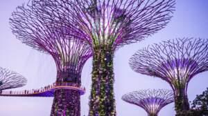 Testez vos connaissances sur Singapour
