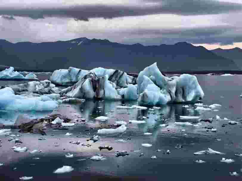 Les géants de la finance BlackRock et JPMorgan épinglés pour le décalage entre leurs discours et leurs actes sur l'environnement