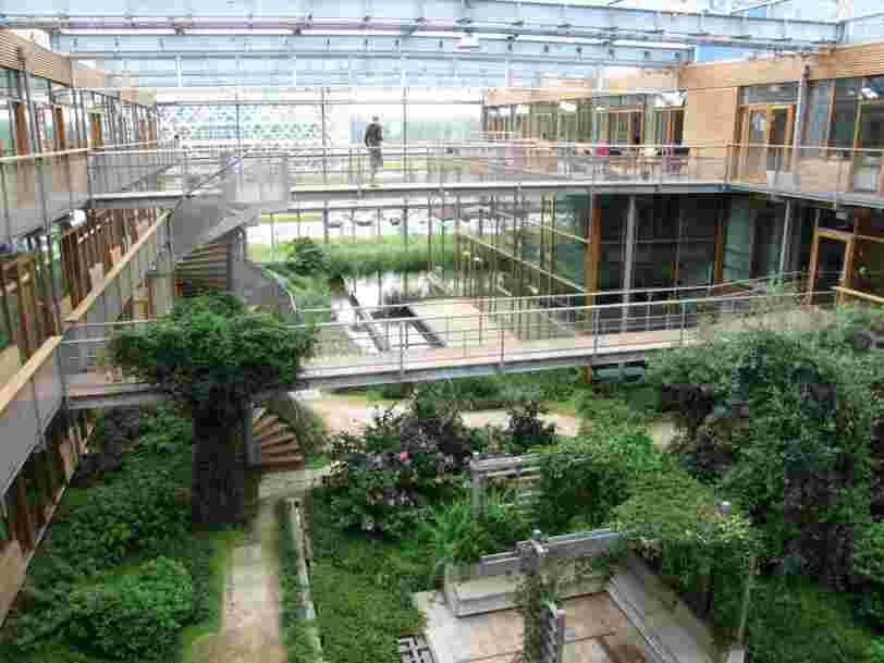 Les 20 meilleures universités pour se former à l'écologie selon le classement de Shanghai