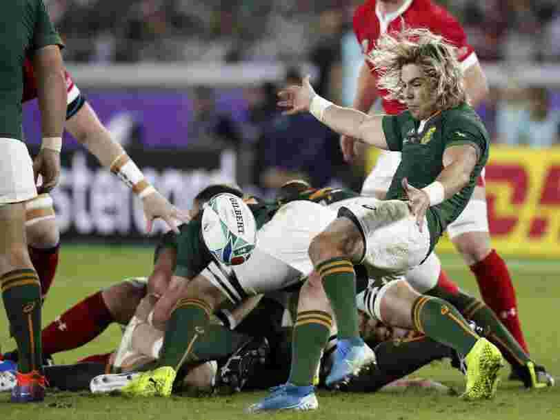 TF1 souffre de l'annulation de matches à la Coupe du monde de rugby