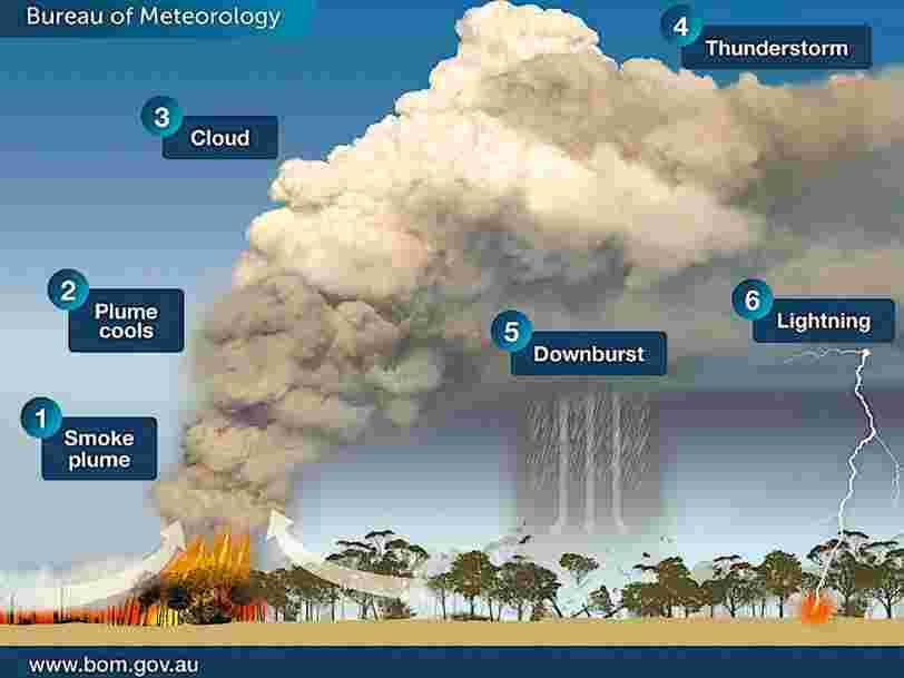 Les gigantesques feux de brousse en Australie génèrent des orages qui peuvent favoriser d'autres incendies