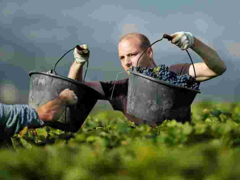 Il y a eu 74 millions de bouteilles de Bordeaux vendues en Chine en 2016 — et c'est un record