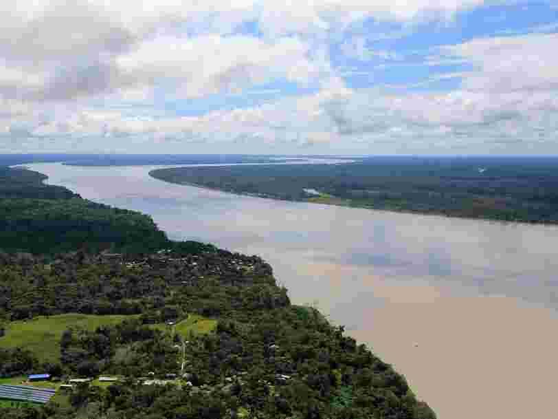 Amazon gagne le droit d'utiliser le nom de domaine '.amazon' face au Brésil et 7 autres pays d'Amazonie