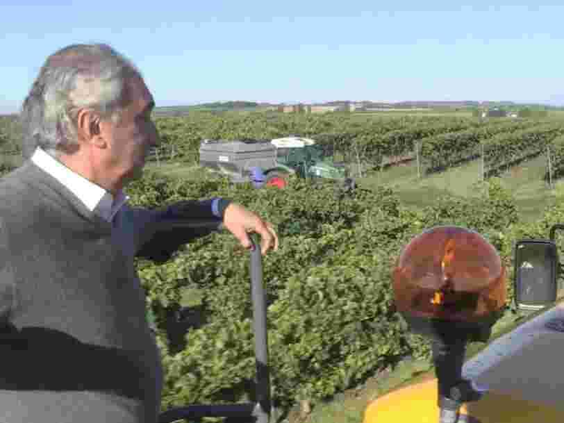 Même si le cognac français s'exporte mieux que jamais, les viticulteurs vont planter prudemment — ils se souviennent de la 'crise des arrachages' d'il y a 10 ans