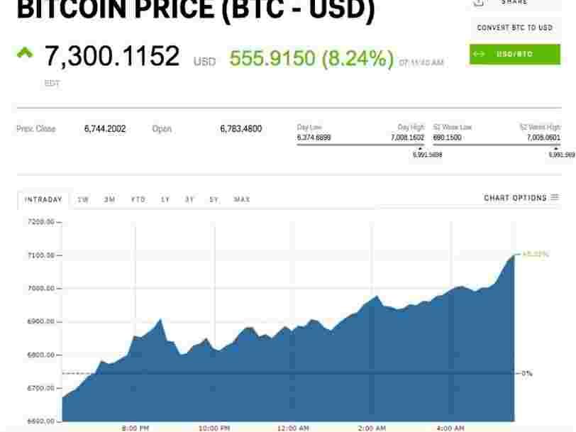 Le cours du Bitcoin a dépassé les 7300$