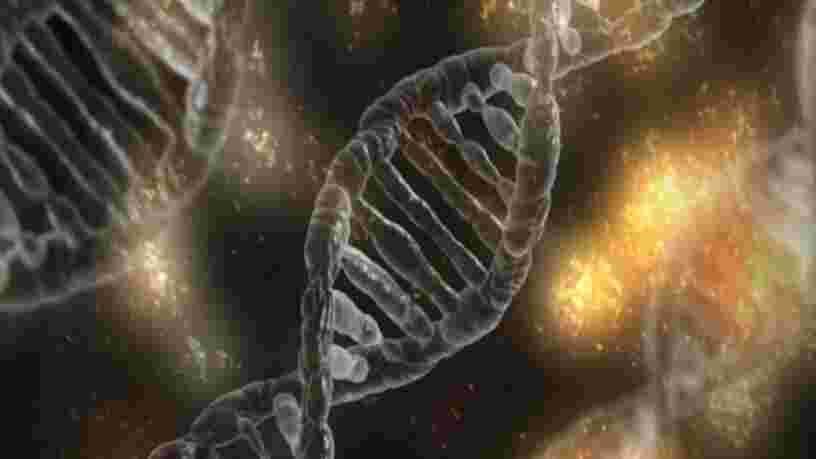 La NASA travaille sur un ADN synthétique qui pourrait nous aider à comprendre les extraterrestres