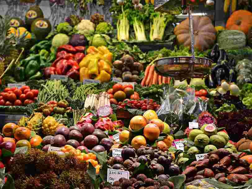 Un rapport du GIEC recommande de manger végétarien pour lutter contre le réchauffement climatique
