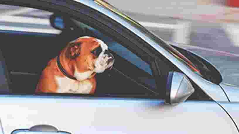 LE DÉVELOPPEMENT DE LA VOITURE AUTONOME : Quels impacts sur l'industrie automobile