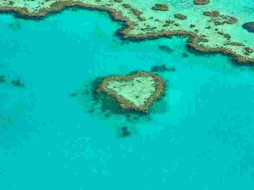 La Grande barrière de corail est l'un des endroits les plus spectaculaires du monde — voici à quoi elle ressemble en disparaissant