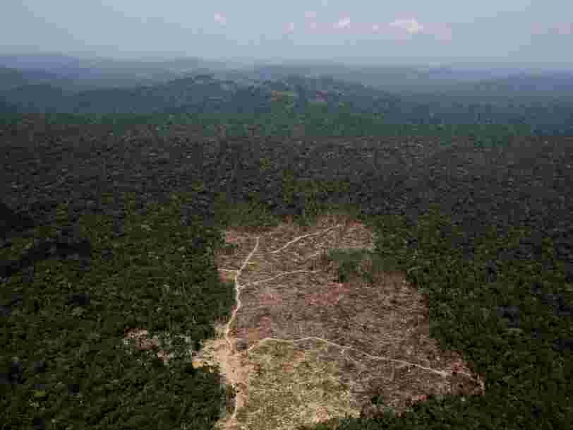 L'élection d'un président d'extrême droite au Brésil pourrait dévaster l'Amazonie et des communautés indigènes réclament un 'couloir sacré de la vie' pour la protéger