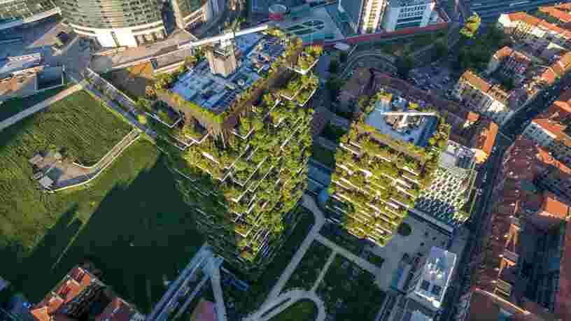 Ces projets montrent que créer des villes-forêts pour lutter contre le changement climatique fonctionne réellement