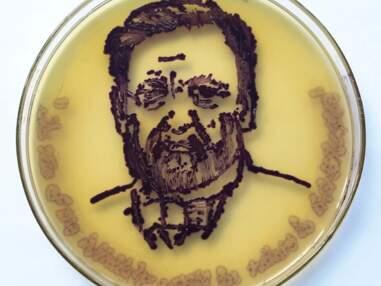 Dix peintures en bactéries