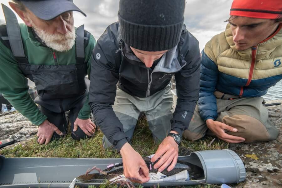 Les scientifiques en action aux Îles Kerguelen
