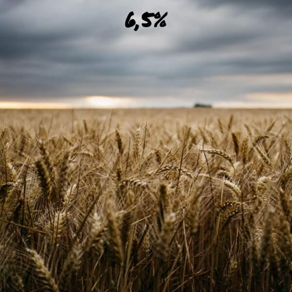 Agriculteurs en détresse