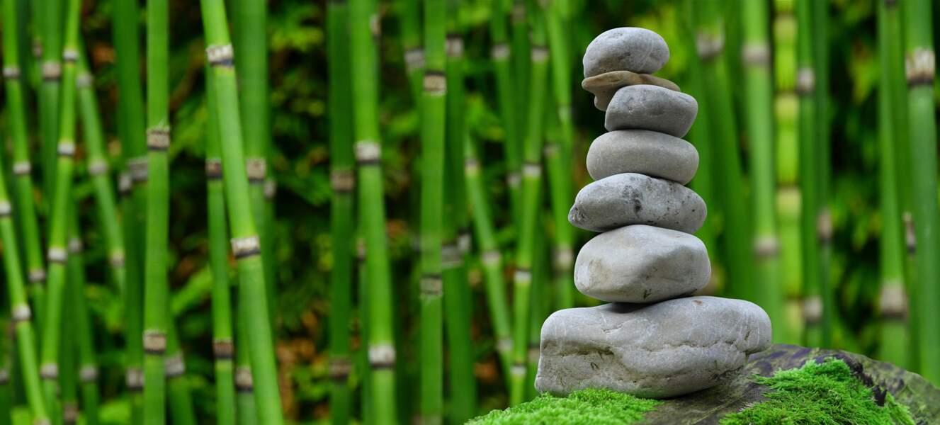 6. Se promener au milieu d'un parc zen