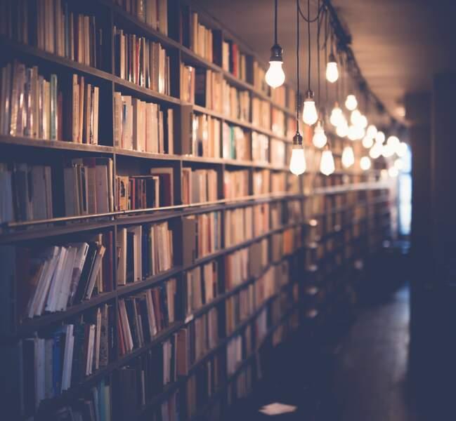 7. Lire en paix à la bibliothèque de la Cité de l'architecture et du patrimoine