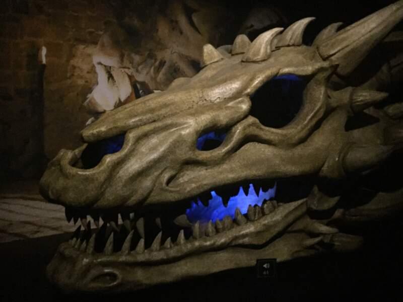 Un crâne de dragon