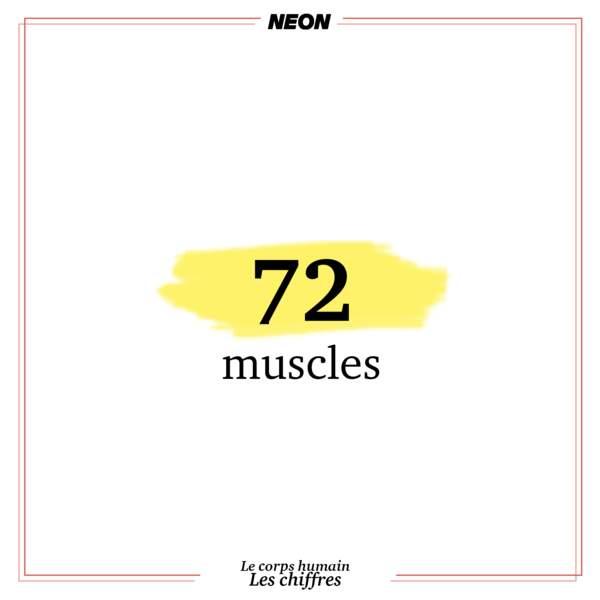 72 muscles sont nécessaires pour parler