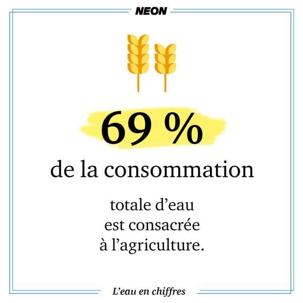 69% de la consommation totale d'eau est consacrée à l'agriculture.