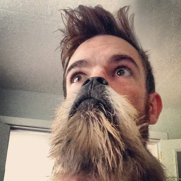 Chien qui fait office de barbe