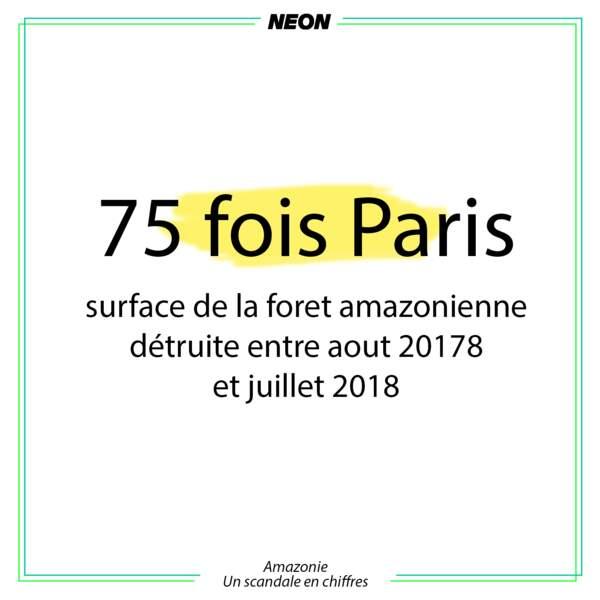 75x Paris
