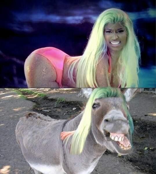 L'âne et la cruche