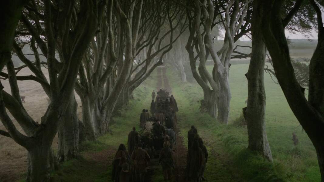 The Kingsroad à Westeros
