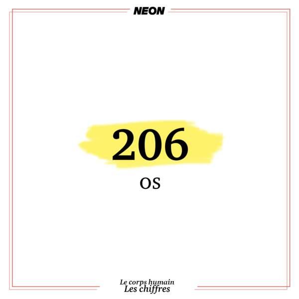 206 os