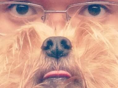 Dog beard : prenez du poil de la bête