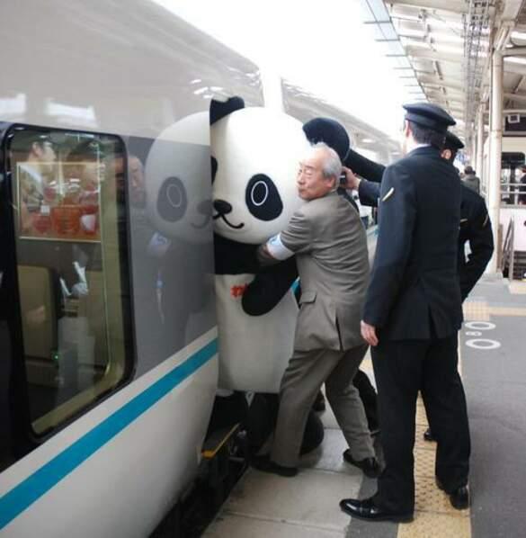 Un panda peine à monter dans un train...