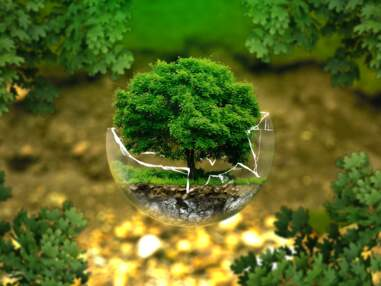 17 chiffres terrifiants sur la crise écologique
