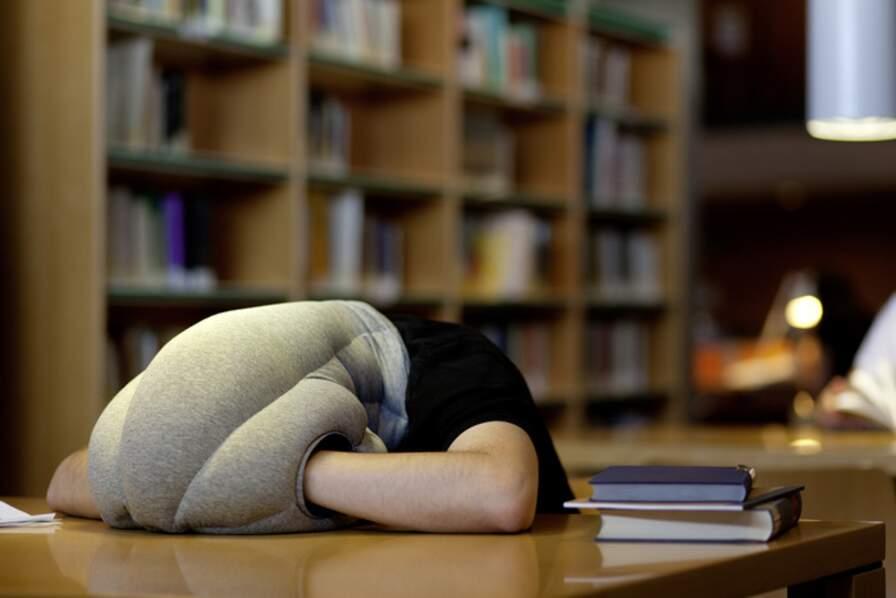 L'oreiller « Autruche » (Ostrich pillow)