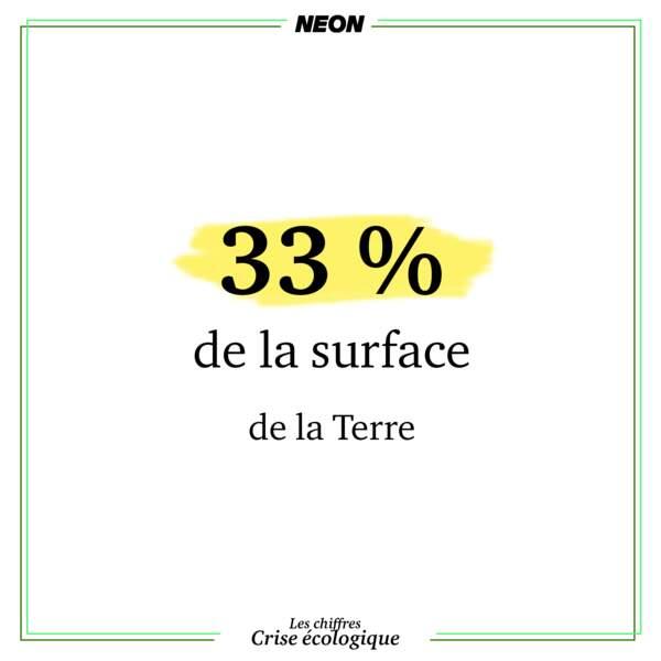 33% de la surface terrestre est dédiée à l'agriculture et à l'élevage