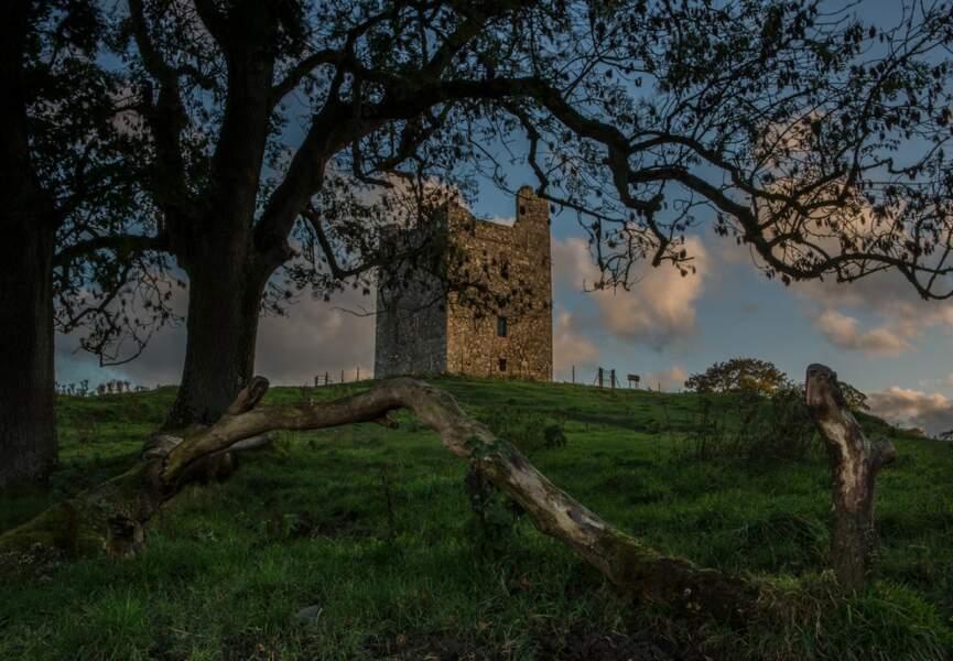 Castle Ward en Irlande du Nord