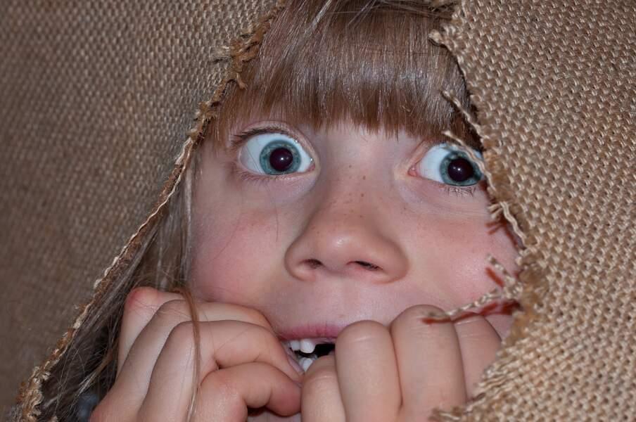 20% de la population souffrirait de phobie au cours de sa vie