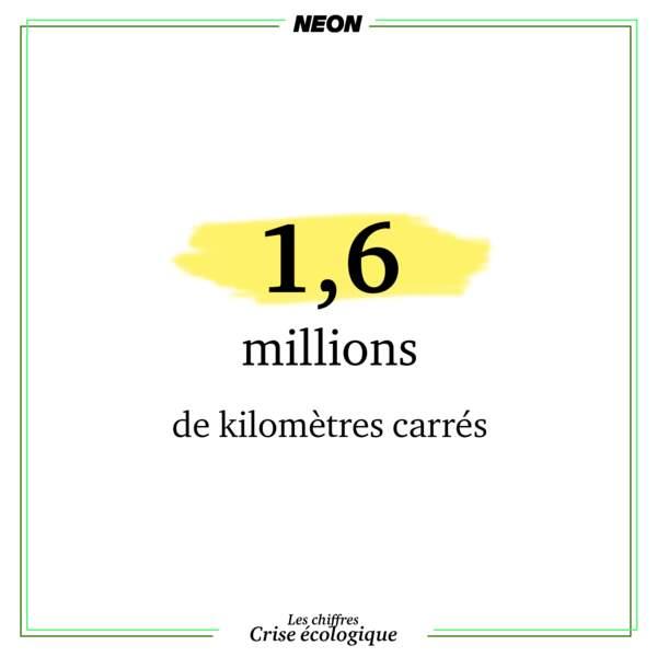 Le 7e continent de plastique, au milieu de l'océan Pacifique, fait 1,6 millions de kilomètres carrés