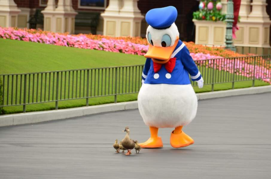 Donald et ses fils