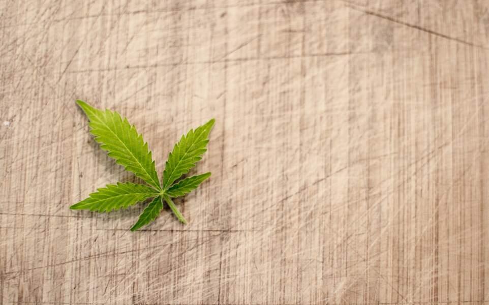 Légaliser le cannabis : Qu'est-ce que ça changerait ?
