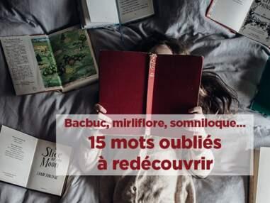 Bacbuc, mirliflore, somniloque… 15 mots oubliés à réhabiliter de toute urgence