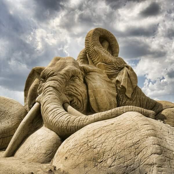 Éléphant de sable
