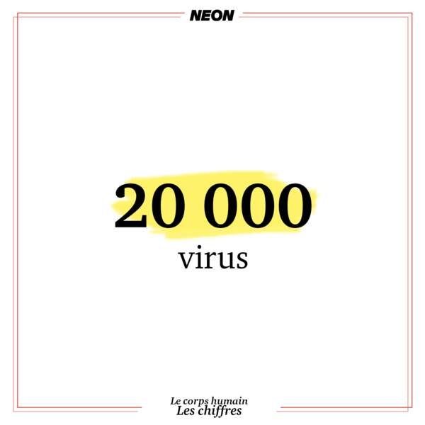 On respire 20 000 virus par minute