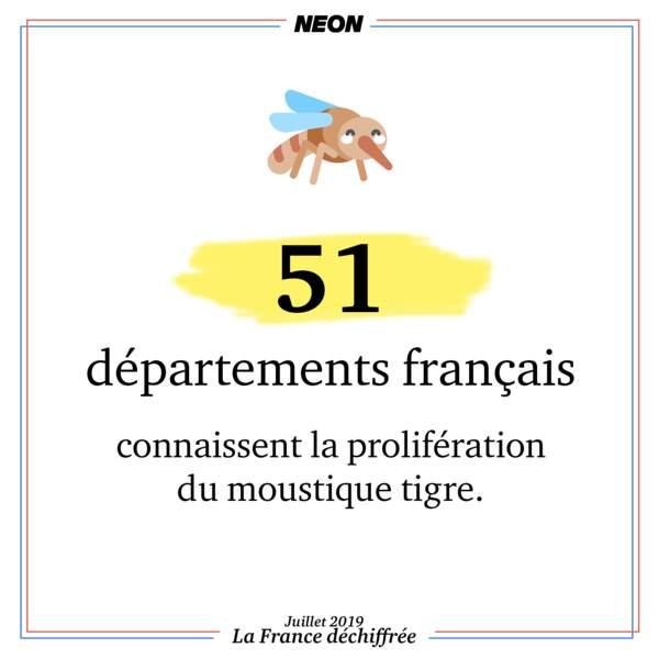 51 départements français connaissent la prolifération du moustique tigre en 2018