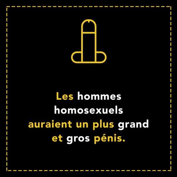 Les hommes homosexuels auraient un plus grand et gros pénis