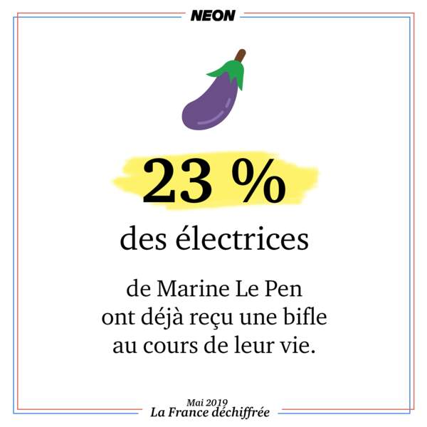 23 % des électrices de Marine Le Pen en 2017 ont déjà reçu une bifle au cours de leur vie