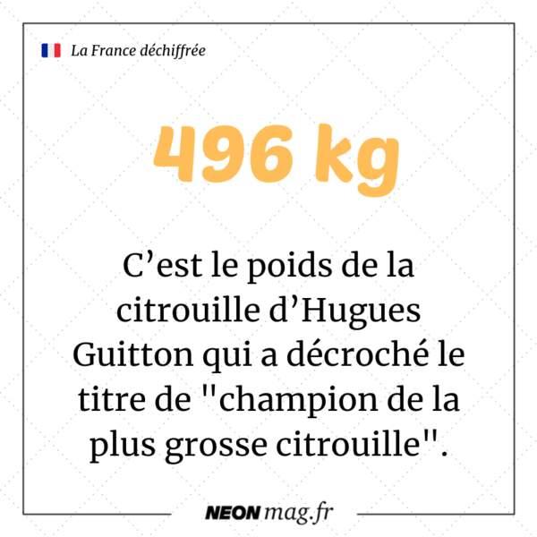 """496 kilos : c'est le poids de la citrouilledu""""champion de la plus grosse citrouille"""""""