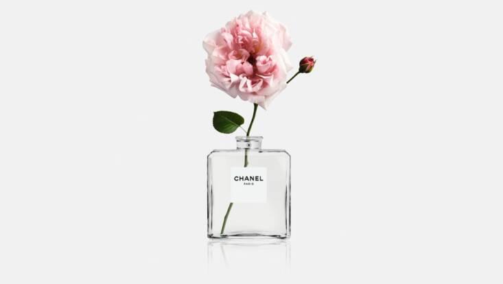 Dans les Champs de Chanel