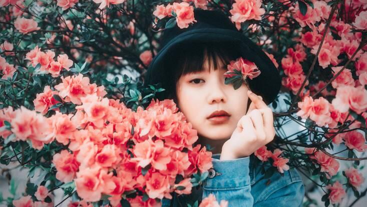 Rose musquée : découvrez-la sous toutes ses formes